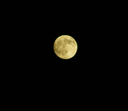 The moon over my house tonight